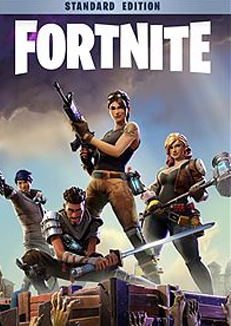 buy-fortnite-pc-standard-edition-satin-al-durmaplay