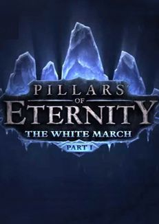 buy-pillars-of-eternity-the-white-march-part-1-dlc-pc-steam-cd-key-satin-al-durmaplay