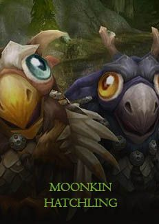 buy-world-of-warcraft-moonkin-hatchling-cover